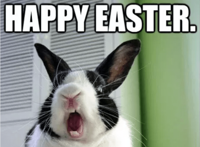Eastercaptionsforcouples Eastercaptionschristian Eastercaptionswithyourboyfriend Eastercaptionsfunny East Easter Humor Happy Easter Meme Happy Mothers Day