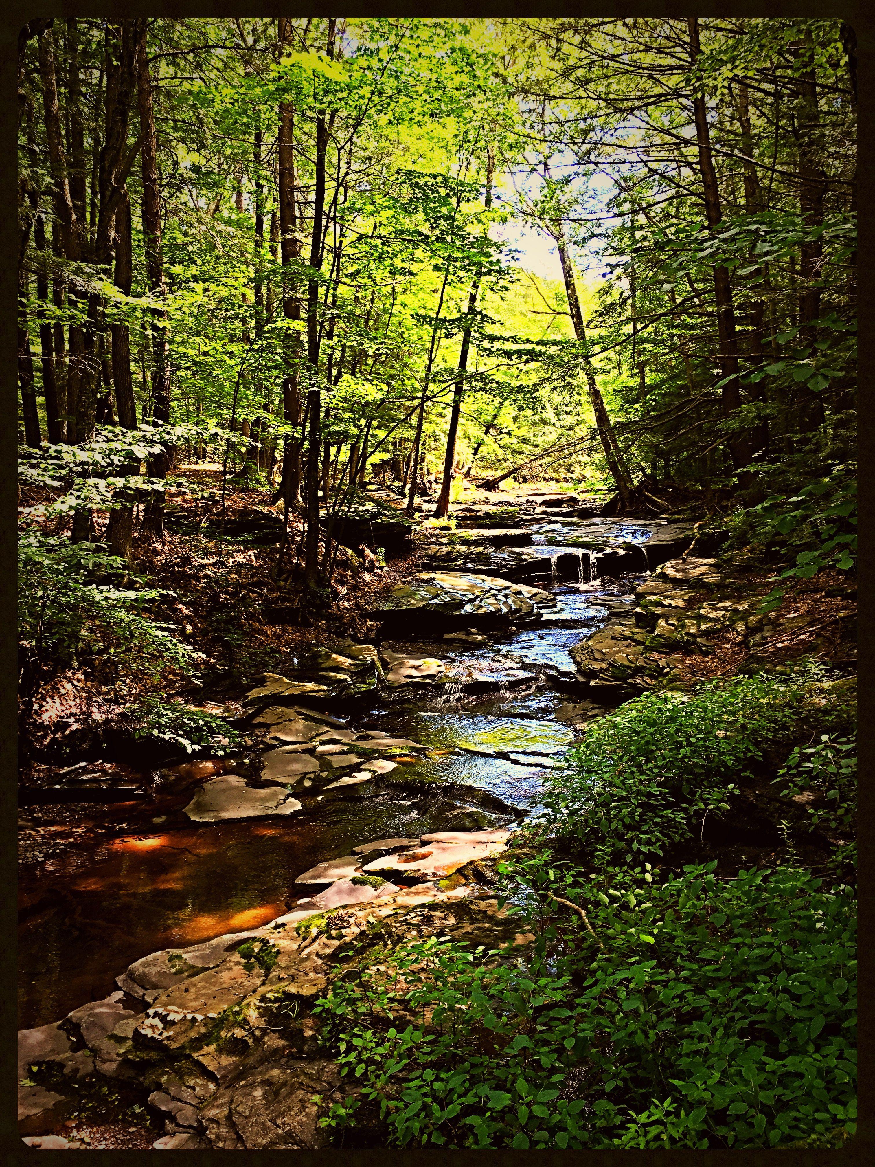 Round Top NY Catskill Mountains Hudson river school
