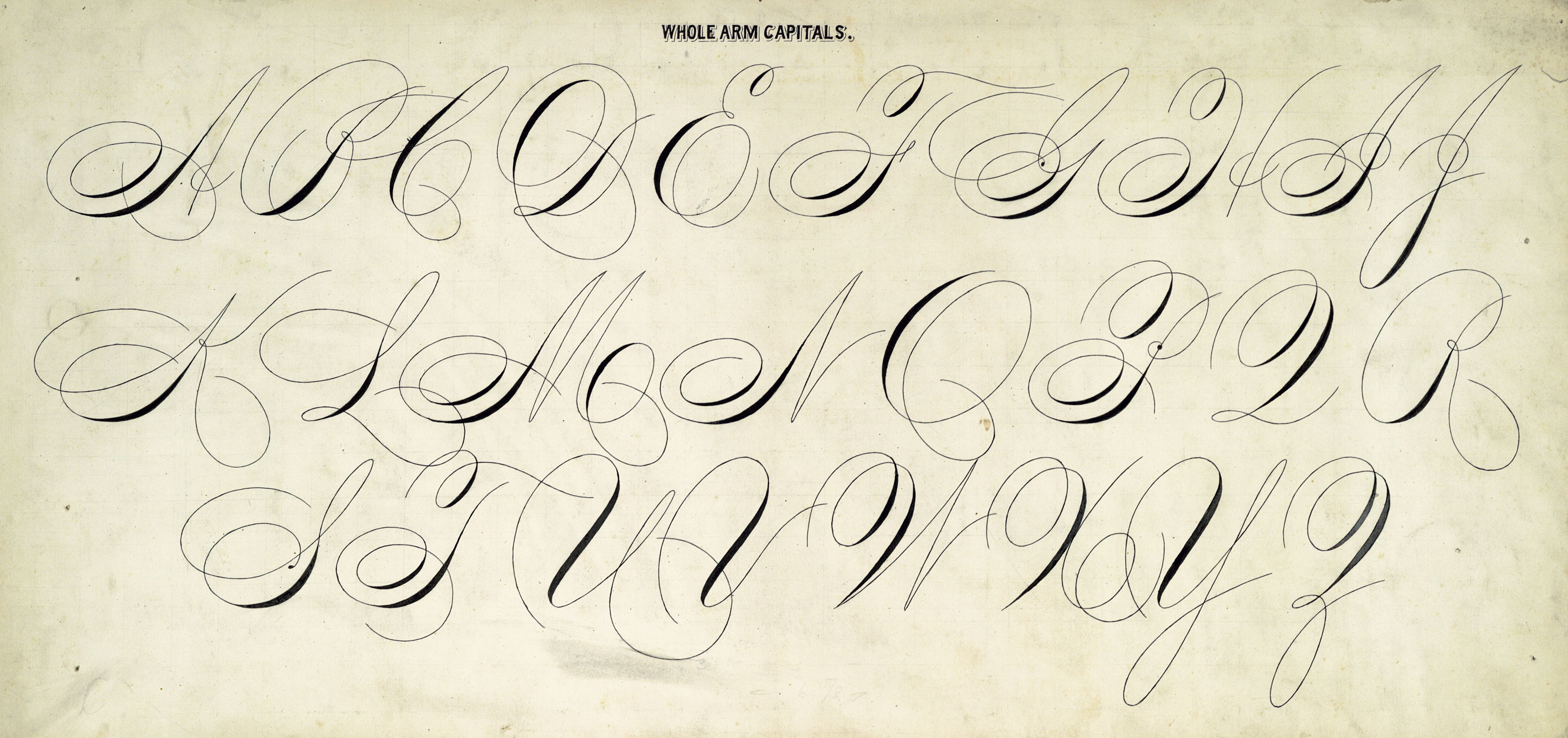 Flickinger Henry W Whole Arm Capitals