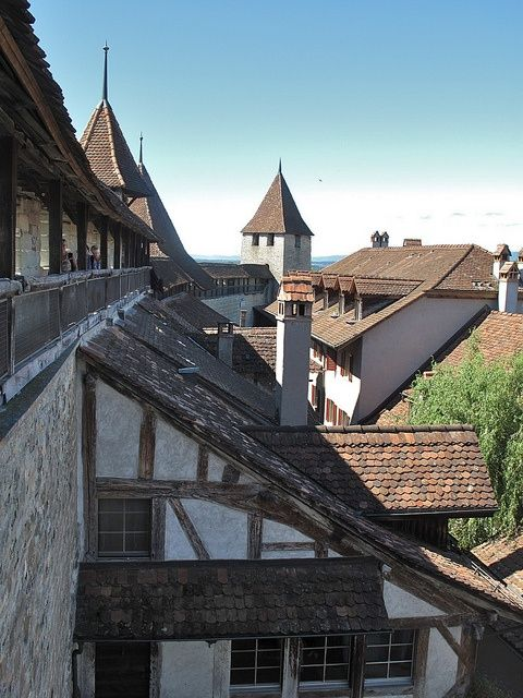 Murten, Canton Fribourg (CH)