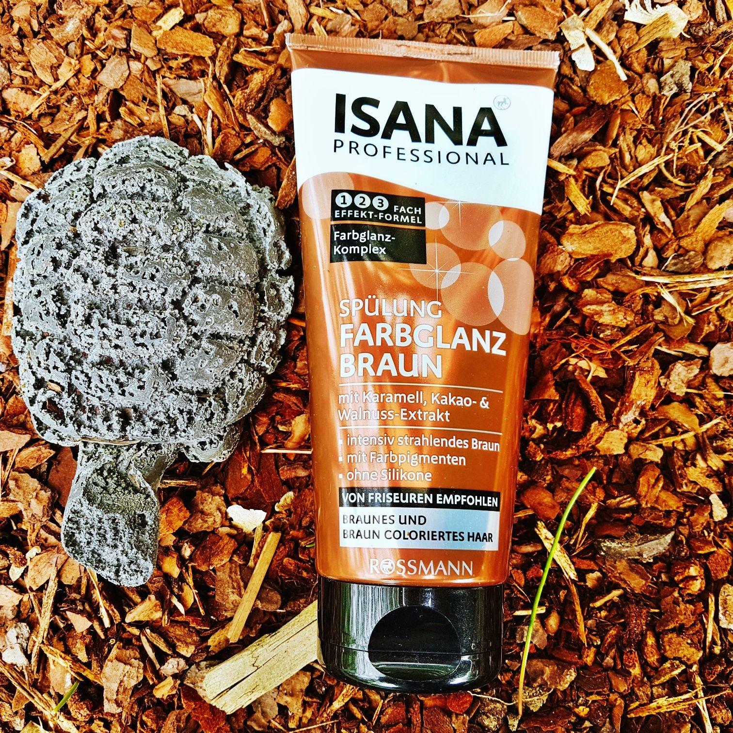 Isana Professional Shampoo und Spülung Farbglanz braun