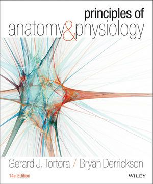 Principles Of Anatomy And Physiology 14th Edition By Gerard J