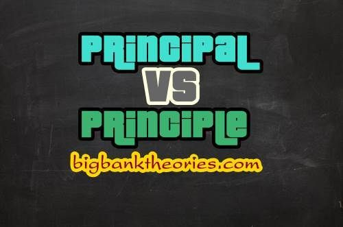 Arti Kata Principal Dan Principle Materi Bahasa Inggris Materi Bahasa Bahasa Inggris