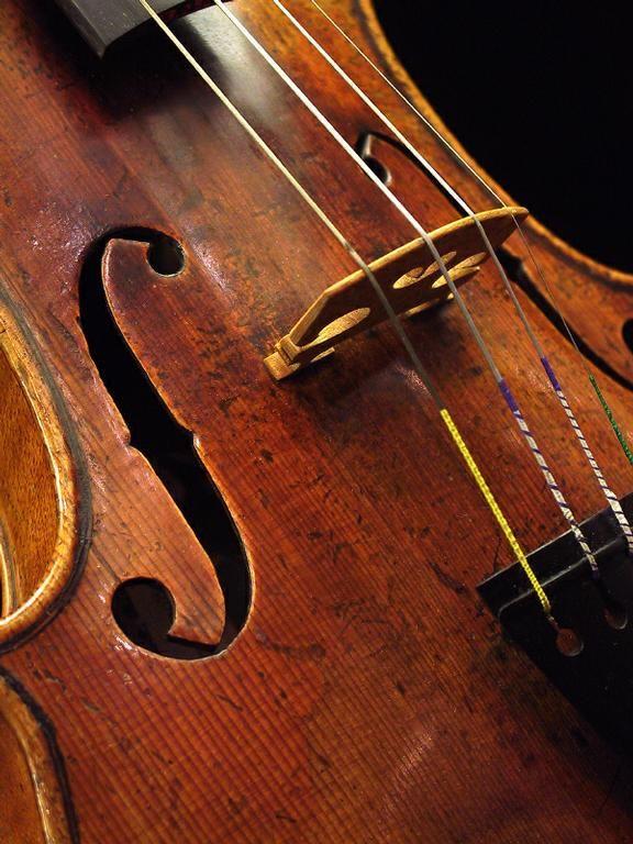 violin detail Larson strings!