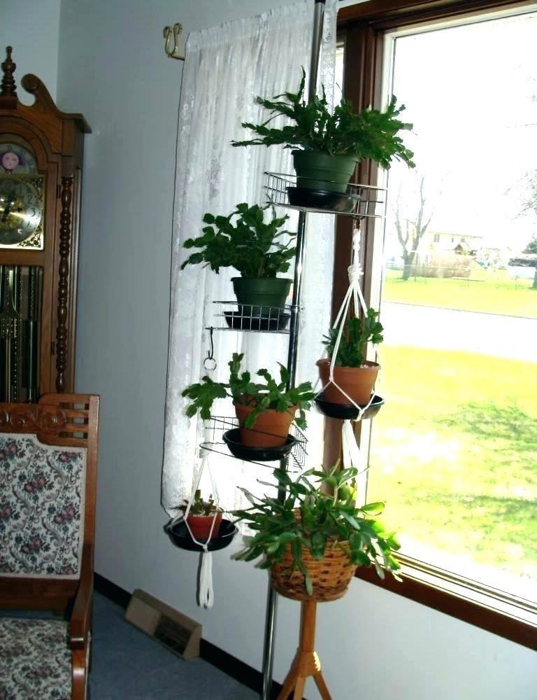 Inserting Nature Look Using Indoor Plant Stands Elegant