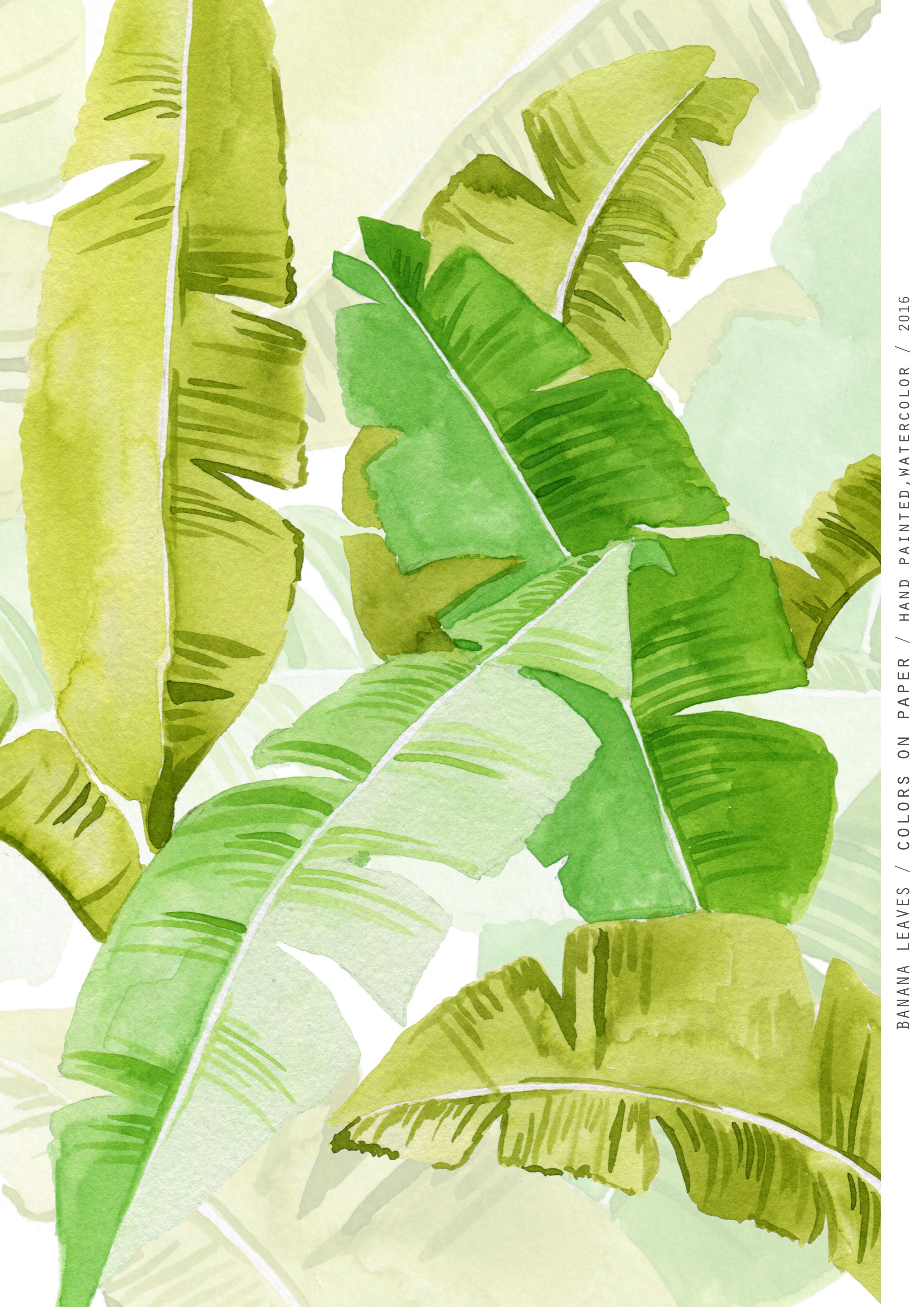 Banana Leaves Pattern Colors On Paper Hand Painted Watercolor 2016