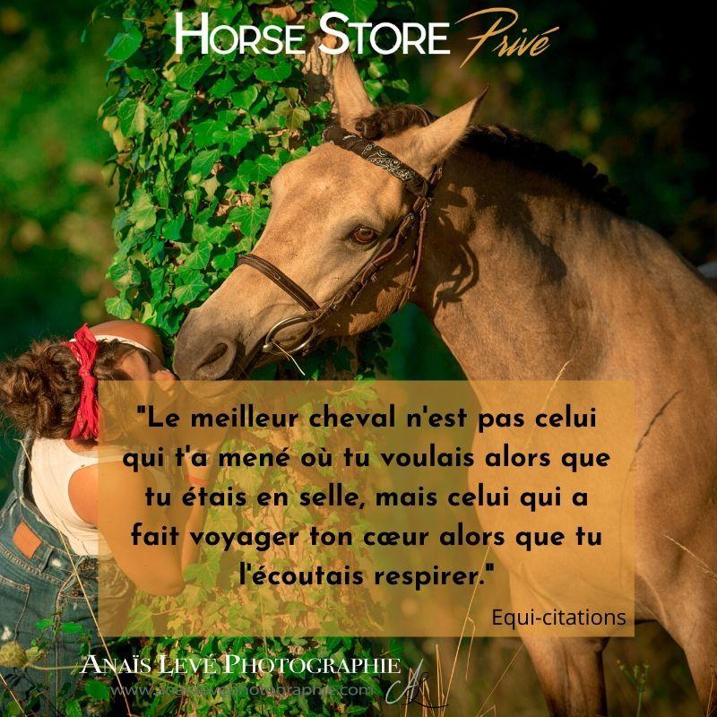Citation de la semaine Horse Store Privé