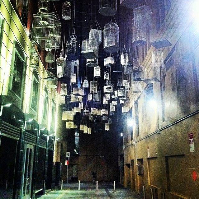 Sydney City Alleyway With Hanging Birdcases Instagram Installation Art Sydney City Photo
