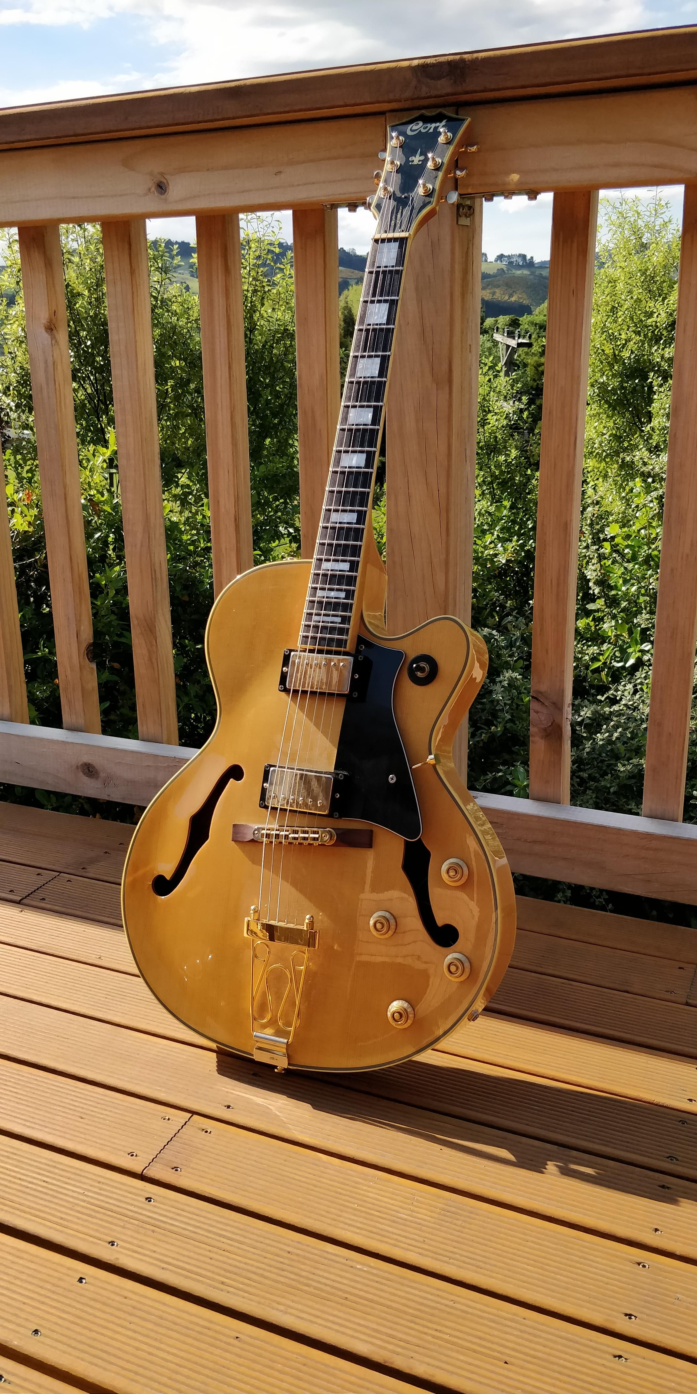 Ngd 07 Cort Yorktown Hollowbody With Low Action And Fast Neck Pickup Are Perfect This This Amazing Cort Guitars Yorktown Guitar