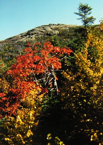 7 30 2015 Wright Peak, Adirondacks, NY,oct 1975