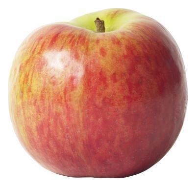Problems With Growing Honeycrisp Apples Honeycrisp