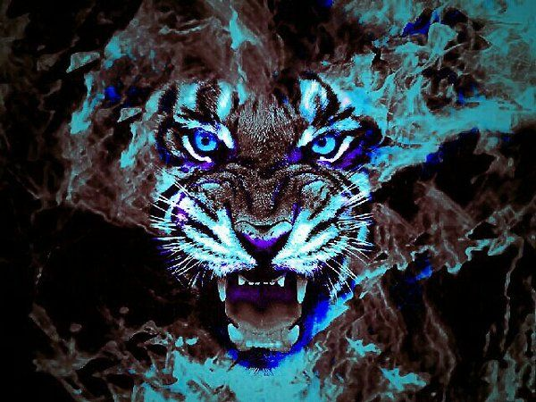 neon blue cool tiger face blue neon image noticable. Black Bedroom Furniture Sets. Home Design Ideas