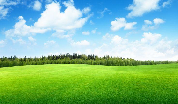 Clouds Trees Field Of Grass Beautiful Nature Landscape Sky Wallpaper Background Pemandangan Latar Belakang Perjalanan