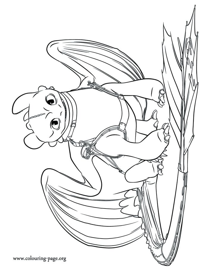 Toothless From Httyd Coloring Pages Ohnezahn