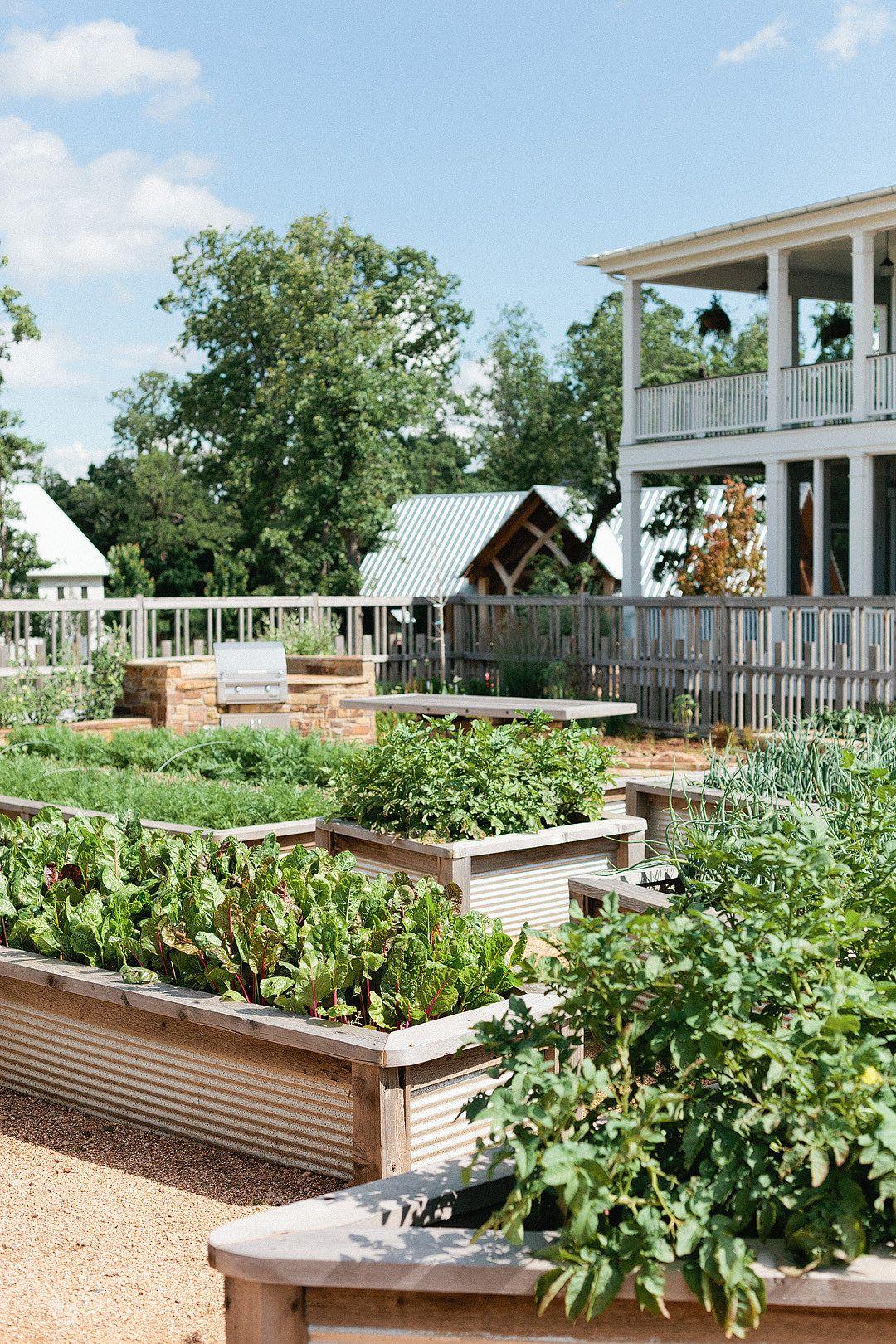 New home garden ideas  Eclectic Farmhouse Tour  Gardens Garden ideas and Vegetable garden