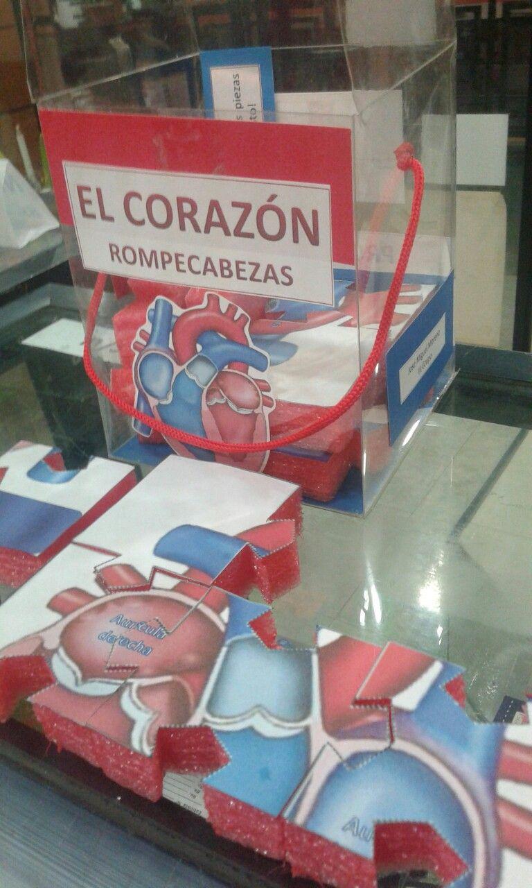 Rompecabezas corazón humano   Carteleras, galerias y afiches ...