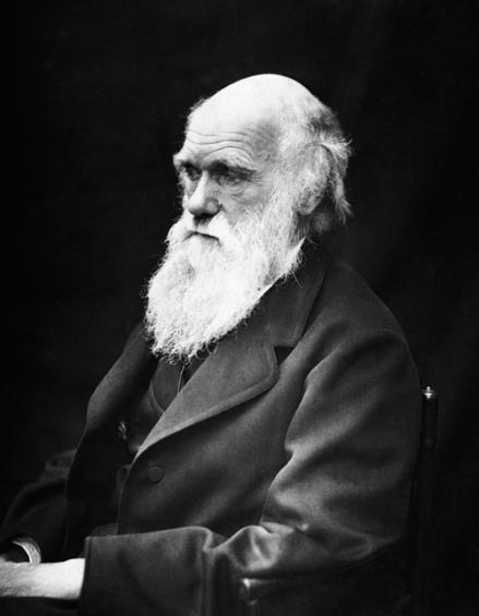 """CHARLES DARWIN Nacionalidad: Británica Fecha de la muerte: 19 de abril de 1882 Profesión: Naturalista Ultima frase: """"No tengo el menor miedo a morir"""""""