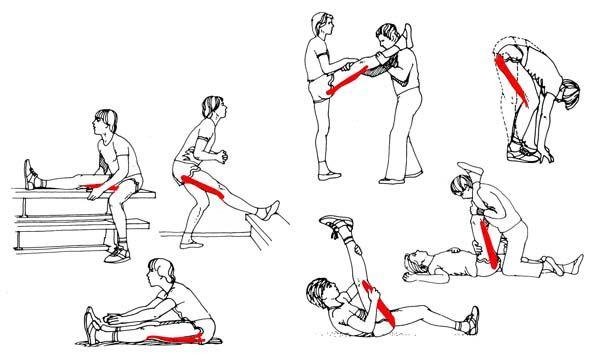 ejercicios de estiramiento para el biceps