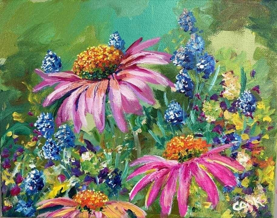 Wild in Wonderful Wonderland of Wildflowers a Beginner ...