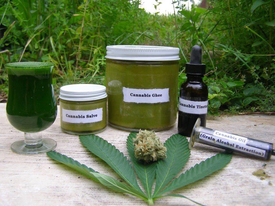 The next time somebody tells you that they don't want to use cannabis because they don't want to smoke it, show them how there are AT LEAST five other ways to use the plant.  Left to right, fresh cannabis juice from the leaves, cannabis salve, cannabis ghee, cannabis tincture, and cannabis oil (Grain Alcohol Extraction).  Raw Cannabis Juice and what it can do: http://berkeleypatientscare.com/2010/09/18/juicing-raw-cannabis-for-greater-health/