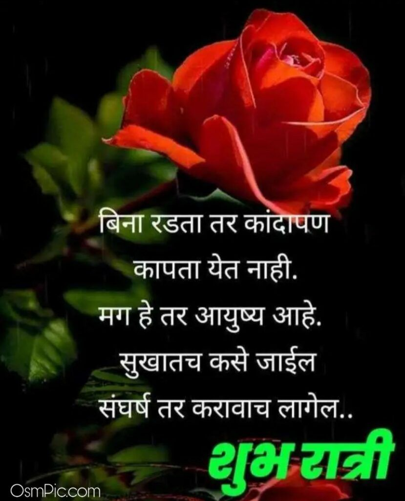 Good Night Images With Quotes In Marathi With Flowers Good