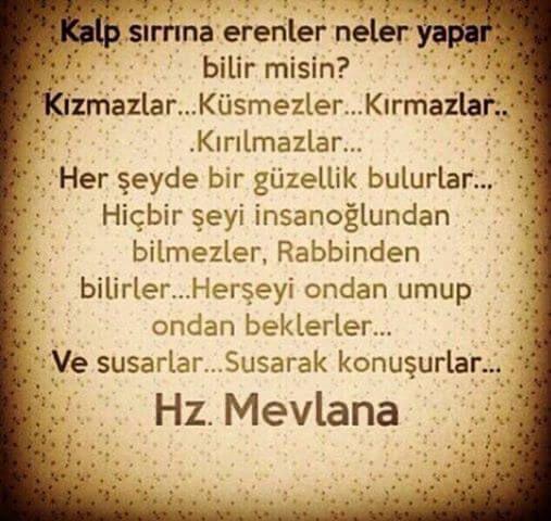 Mevlana Nin Cok Degerli Resimli Sozleri Burada Cok Iyi Abi Meaningful Lyrics Inspiring Quotes About Life Turkish Quotes