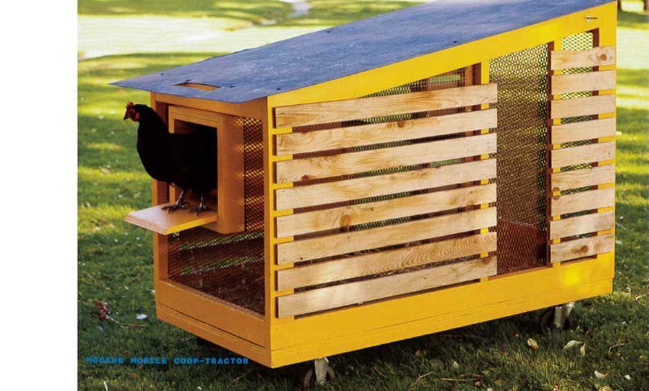 Modern Chicken Coop Designs   All About Chicken Coop 2017 Ideas Nice Ideas