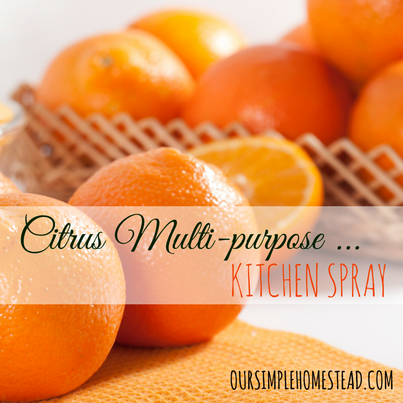 DIY Citris Multi-purpose Kitchen Spray - If you thought that citrus fruits can only be eaten, you thought wrong. They can make wonderful all-purpose cleaners to use around the kitchen and – why not – the whole house. The next time you want to toss your orange peels in the garbage, think twice.