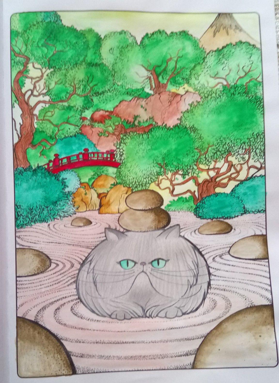 Koty Antystresowa Kolorowanka Z Aforyzmami