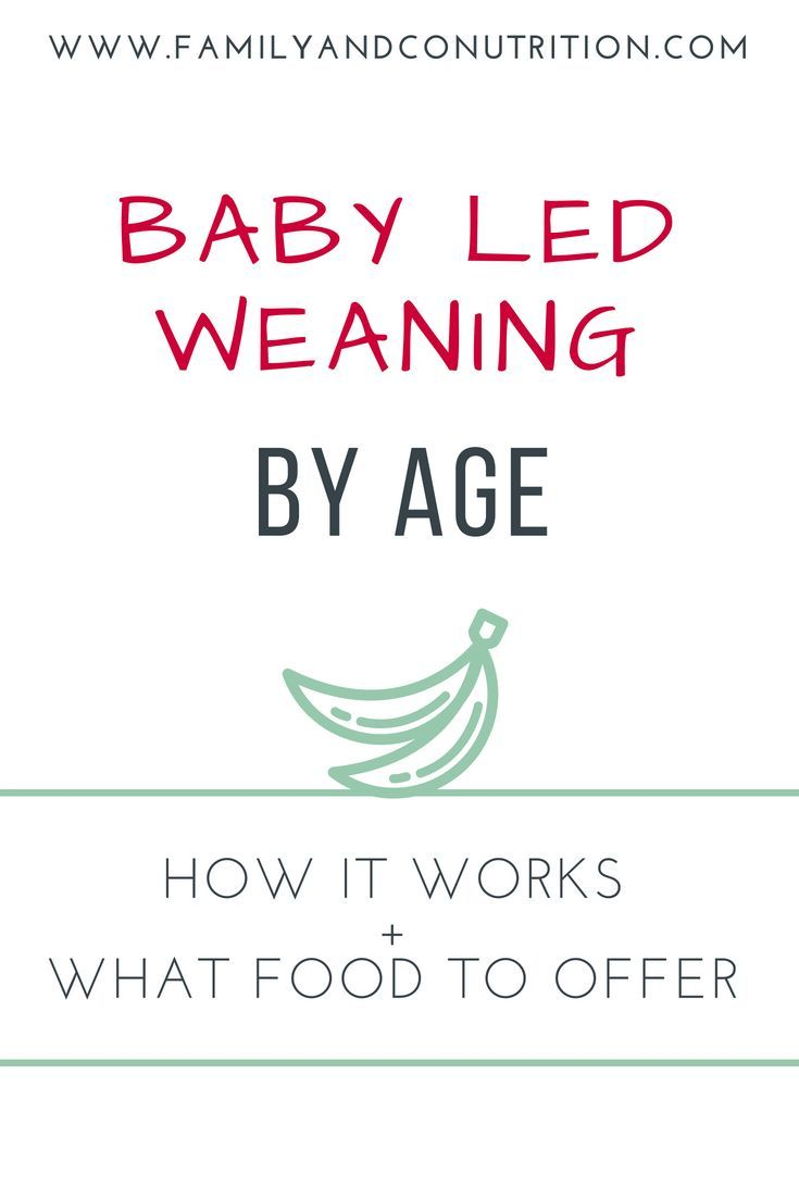 Baby Led Weaning by Age: How it Works and What Foods to Offer