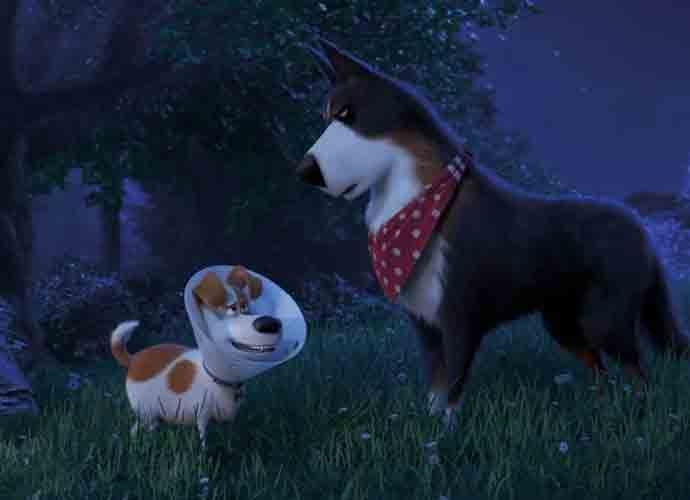 The Secret Life Of Pets 2 Blu Ray Review Not Up To Minions