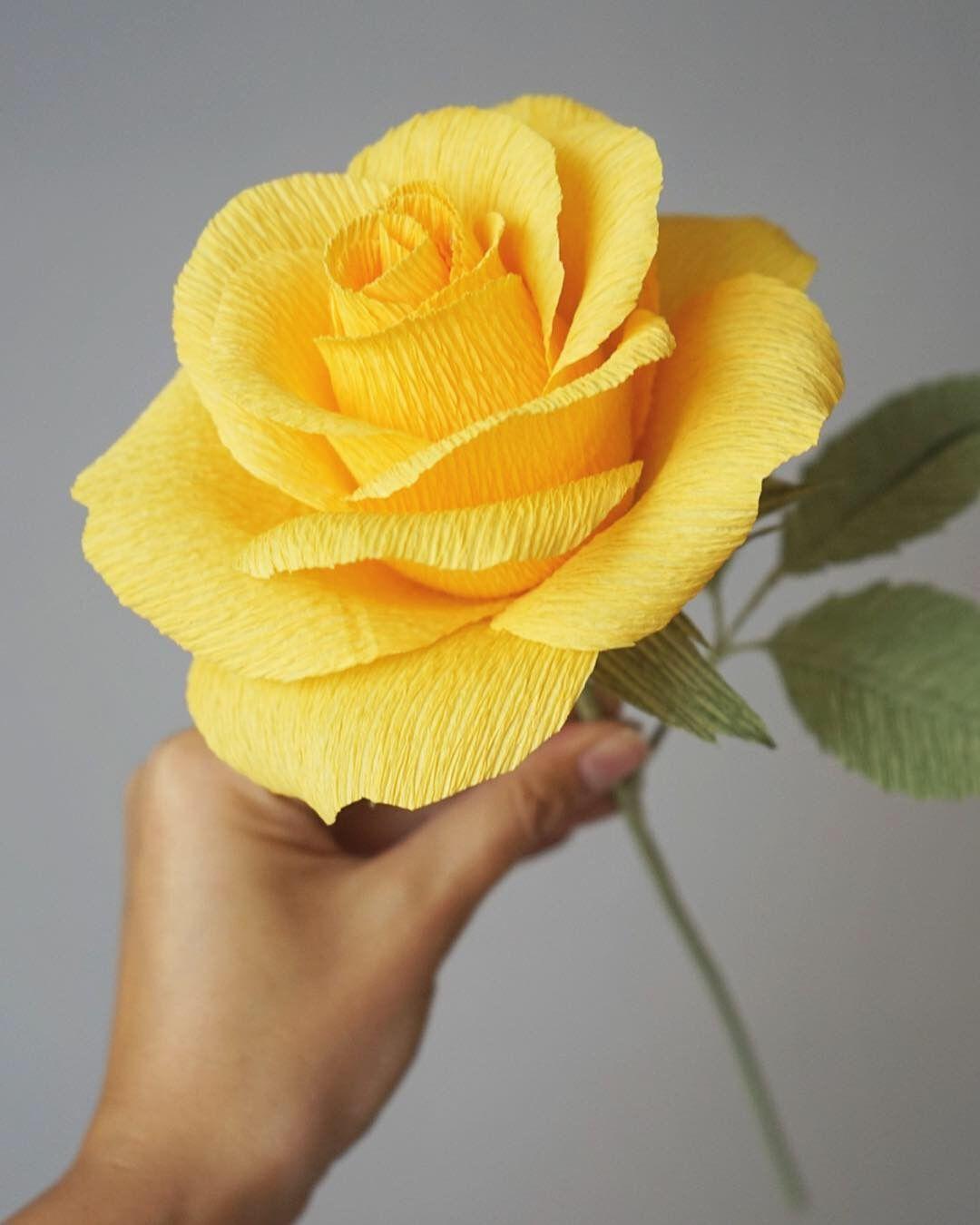 Надписью февраль, роза из гофробумаги для открытки
