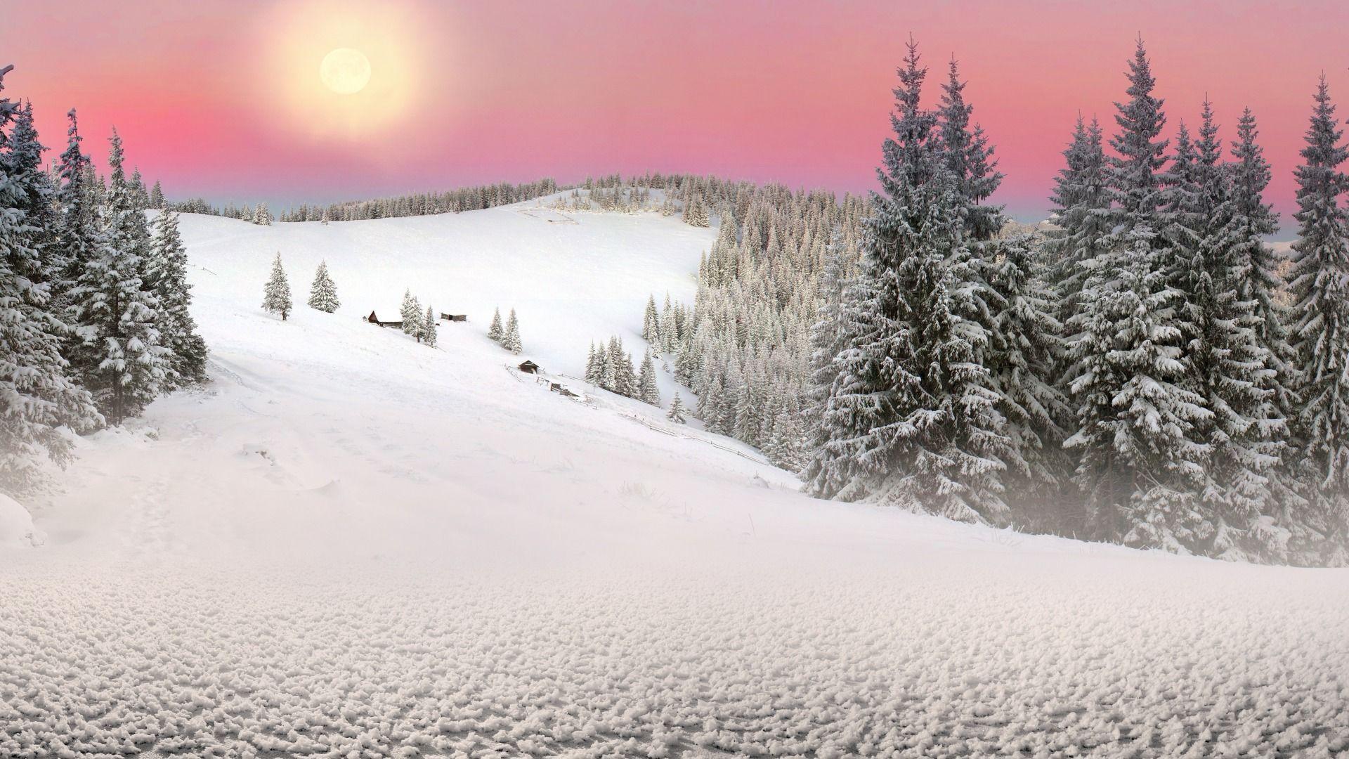 Download Wallpaper The Sun Nature Winter Snow Spruce Ukraine Carpathians Transcarpathia Section Priroda Resolution 1920x1080 Bilder Abendrot Schnee Sunset forest snow winter spruce trees