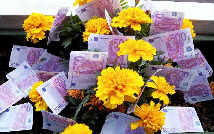 """Картинки по запросу """"квіти гроші"""""""