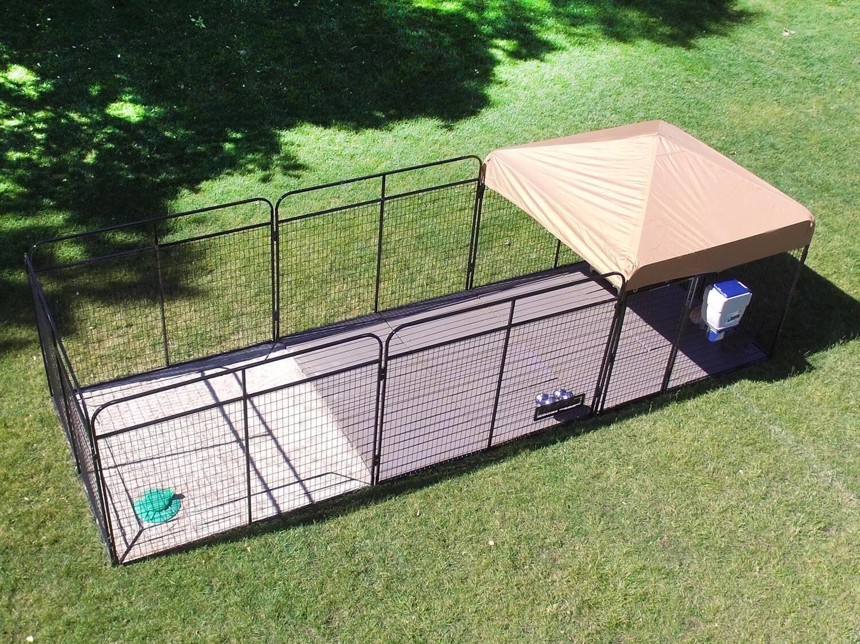 Backyard Dog Run Fence: A Setup Your Dog Will Enjoy   Dog ...