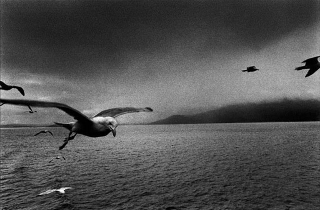 Josef Koudelka is a Czech photographer who's most famous images were of the Warsaw Pact invasion of Prague in 1968.
