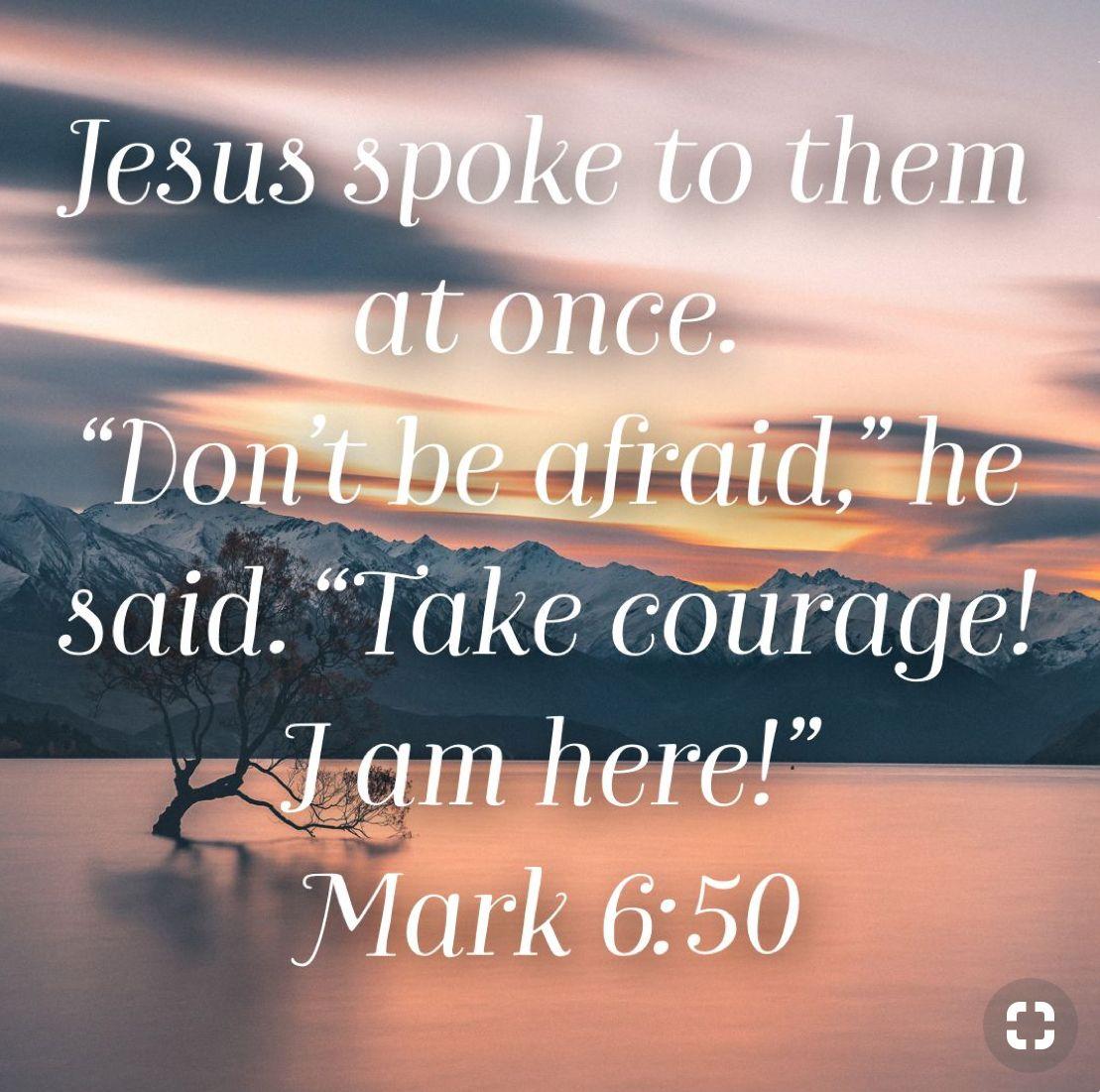 Mark 6:50 | Life/Faith | Bible scriptures, Faith quotes, Biblical quotes