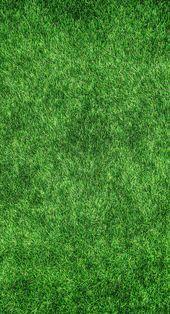 Green Grass Lawn Kostenloses Bild
