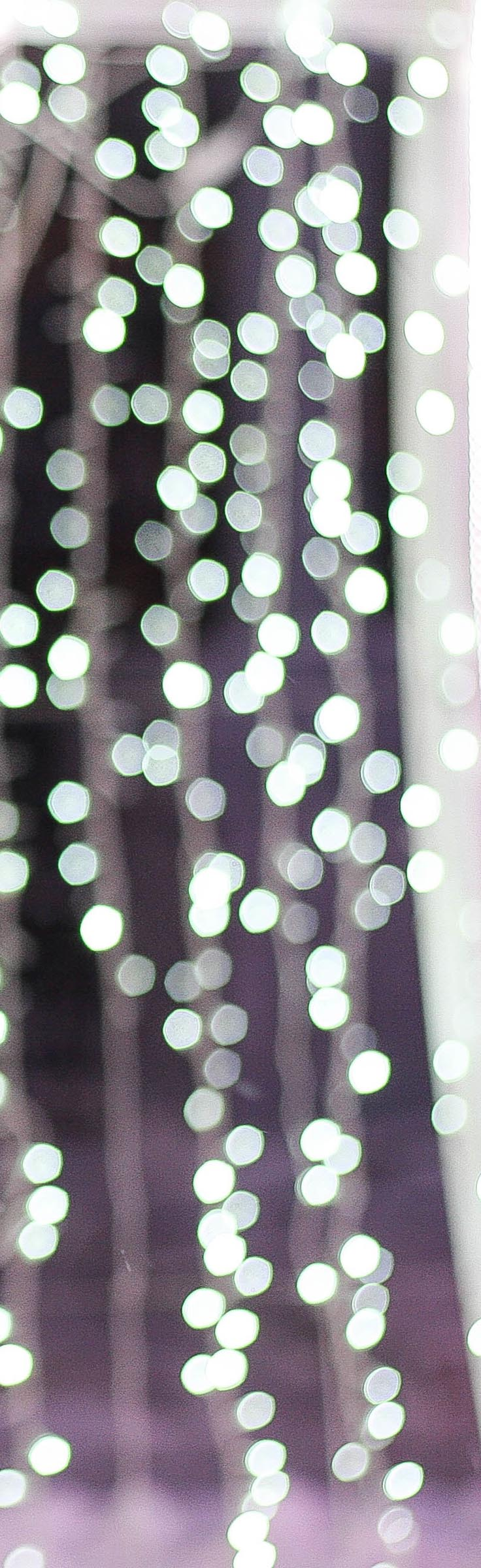 Lights brighten up any winter day, not just the holidays