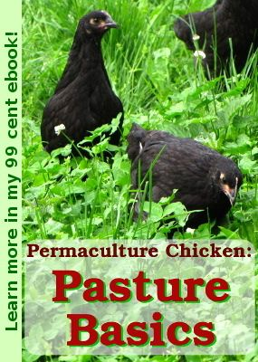 99 cent Permaculture Chicken pasture ebook