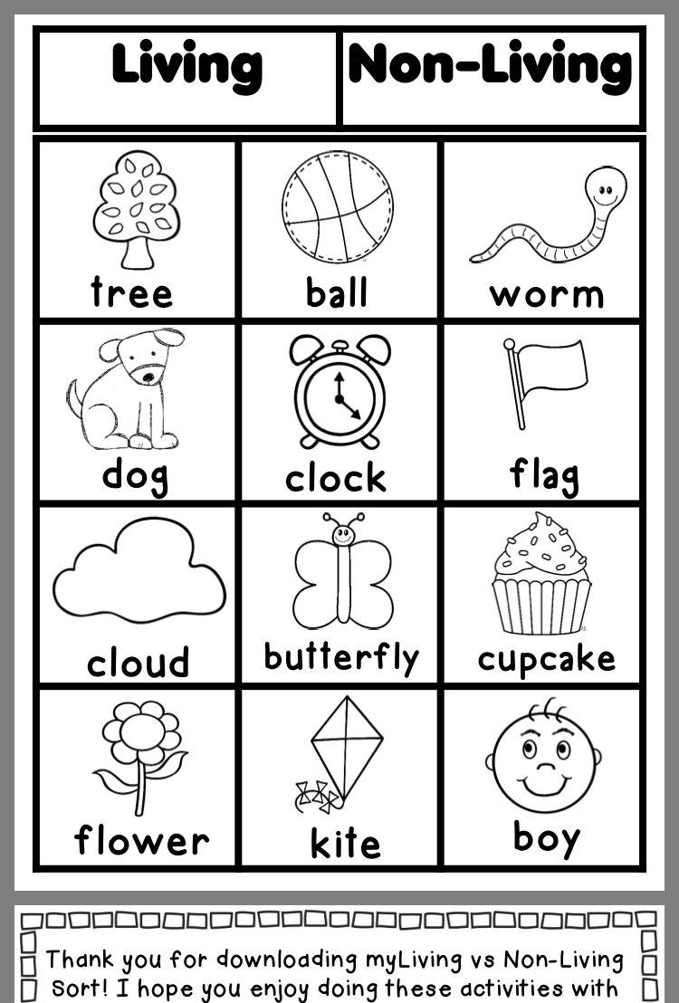 First grade worksheets image by Alex Ramirez on Science