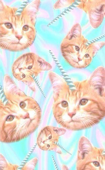 Cat Pose Iphone Wallpaper Idesign Iphone Cat Silhouette Cat