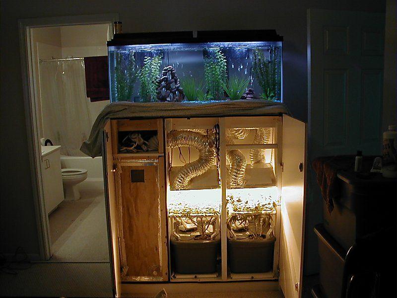 Very Stealth Fishtank Wardrobe Cabinet Growroom Designs
