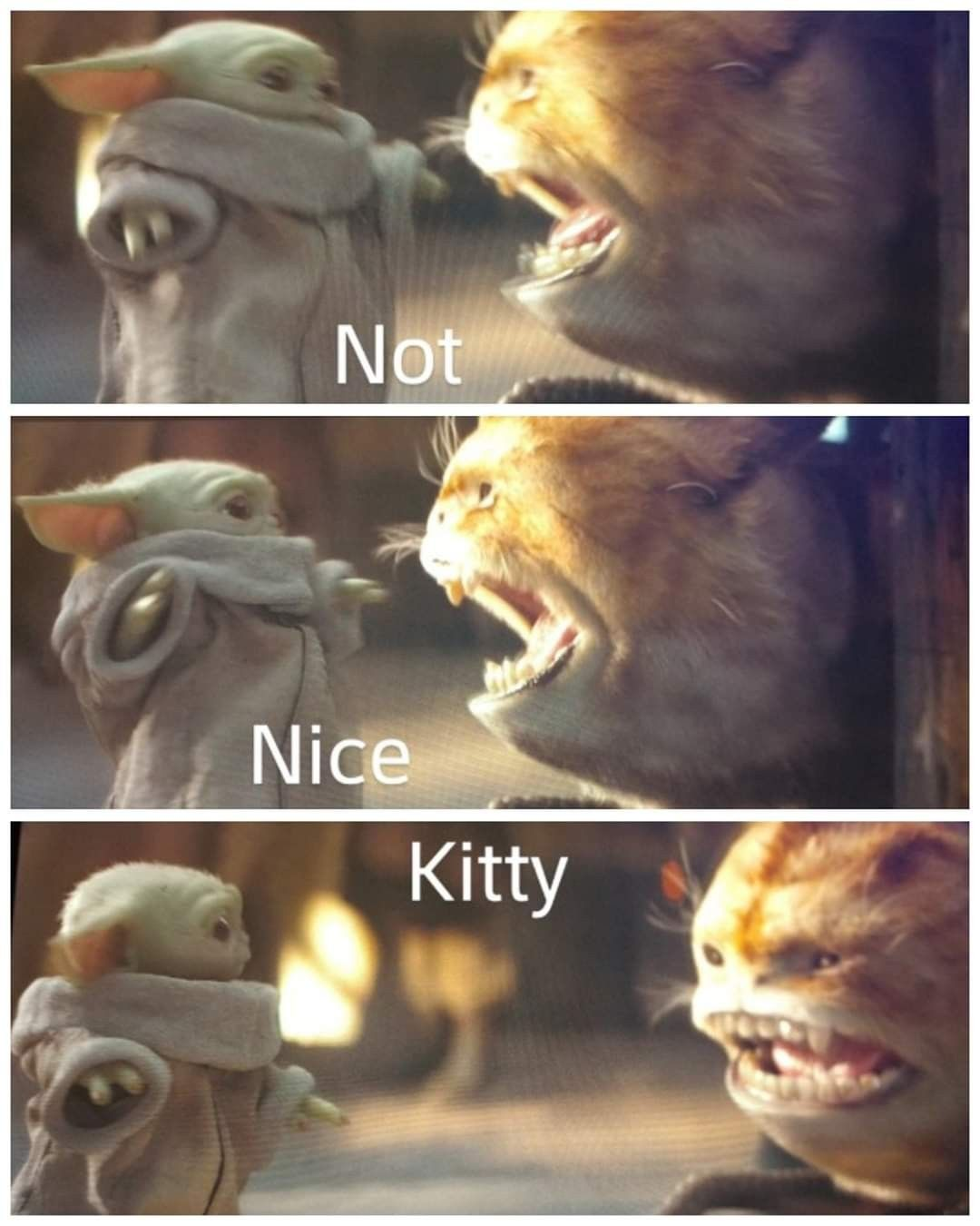 Baby Yoda Loth Cat Meme Star Wars Memes Star Wars Jokes Yoda Meme