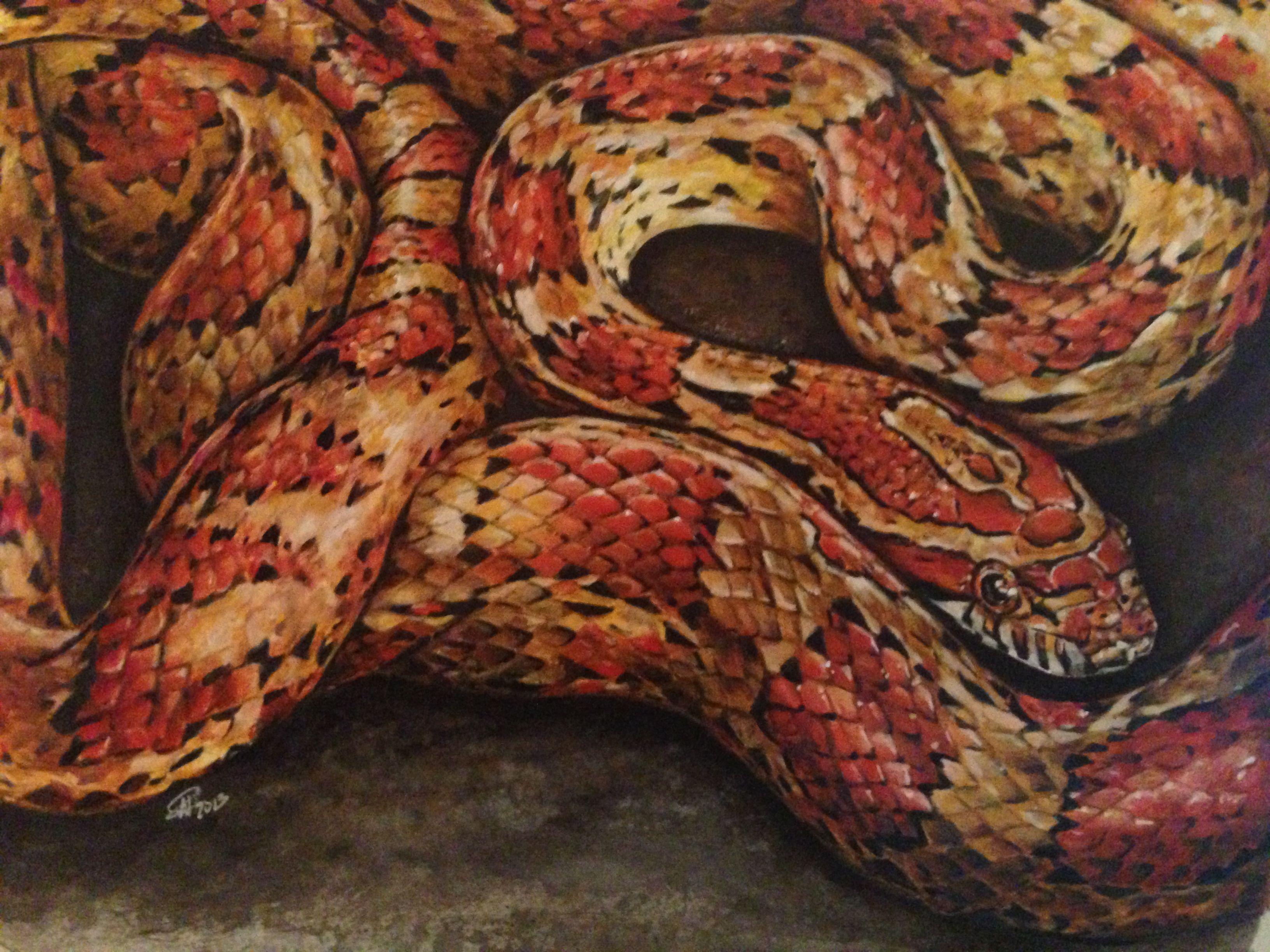 Corn snake colored pencil watercolor second place - Peinture effet serpent ...