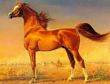 Stunning Oil painting animal red horse  in a Stable no framed FREE SHIPPING COST