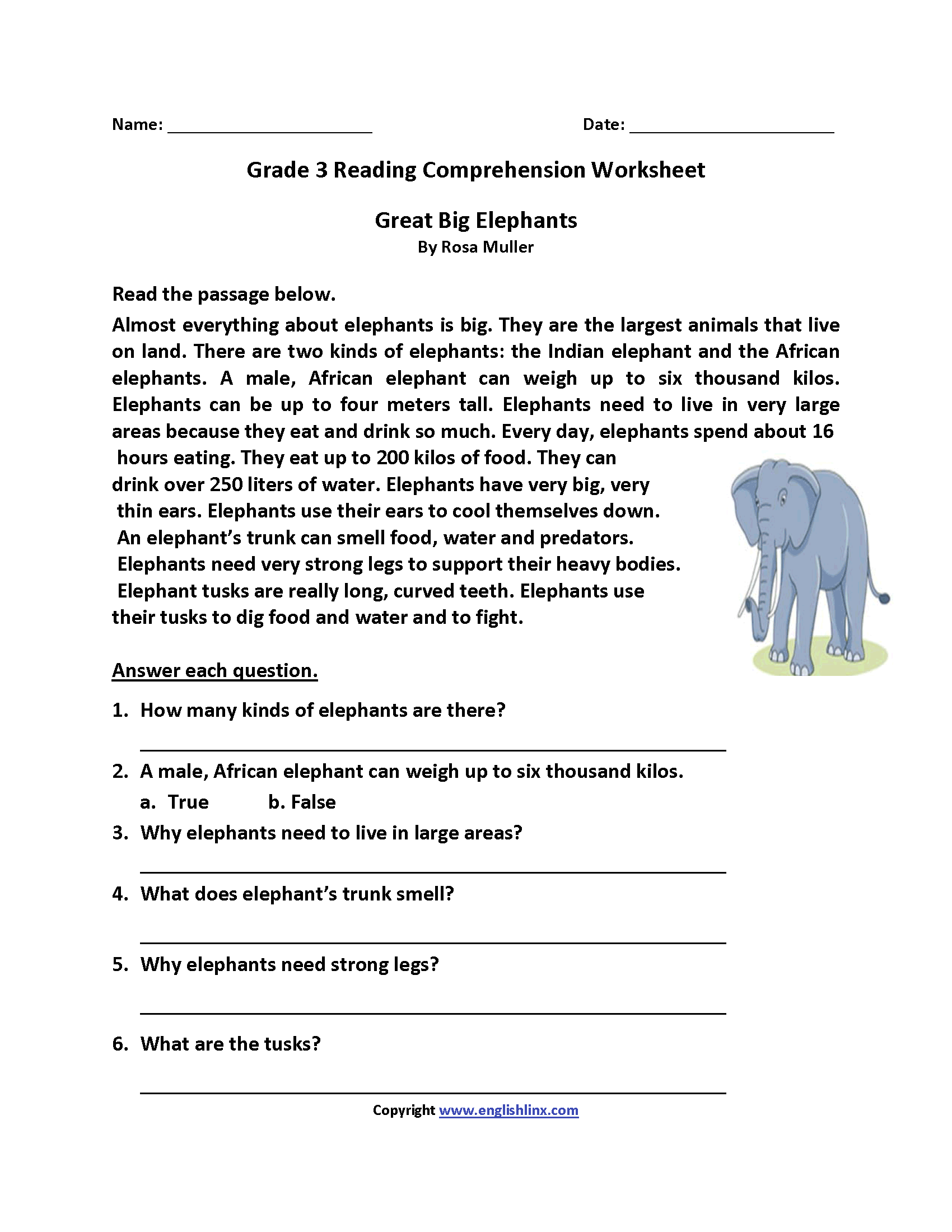Great Big Elephants Third Grade Reading Worksheets   Third grade reading  worksheets [ 2200 x 1700 Pixel ]