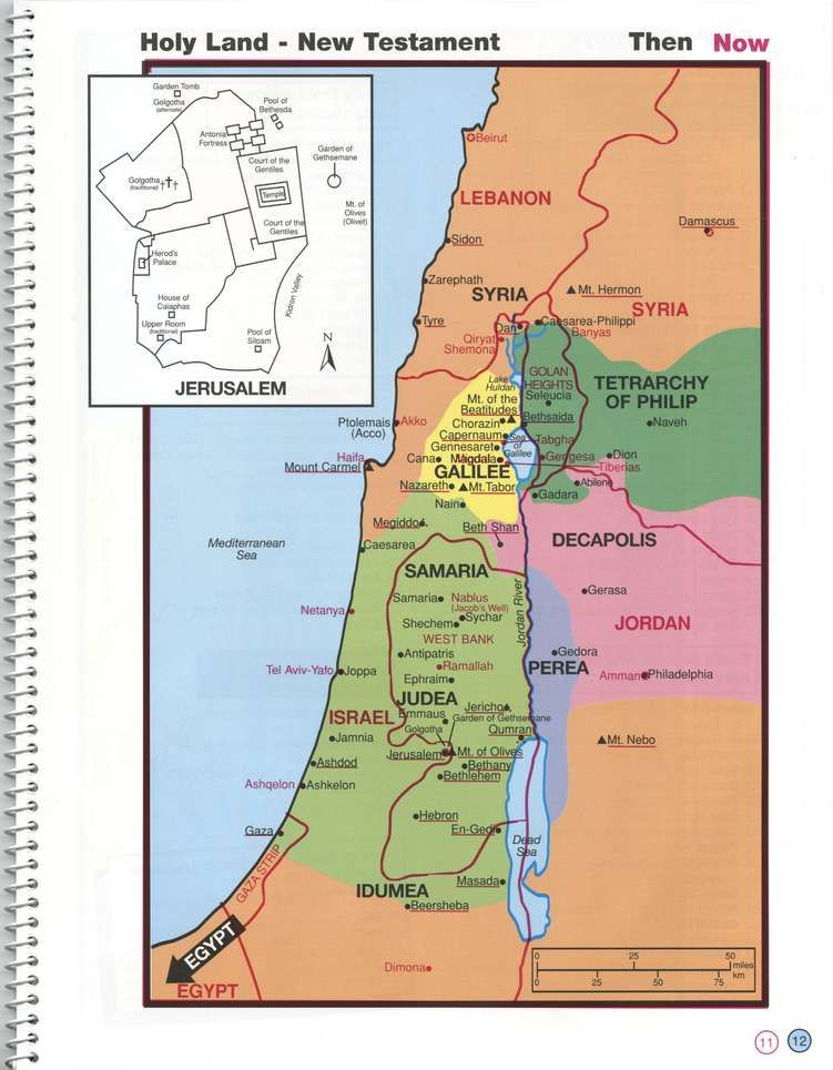Israel Map In The World