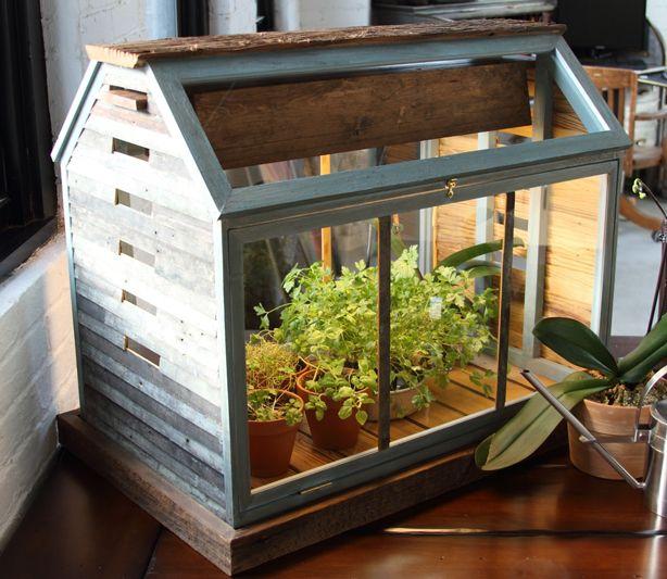 Ordinaire Barn House Herb Garden Terrarium. Beauty Meets Function. Indoor Greenhouse,  Winter Greenhouse,