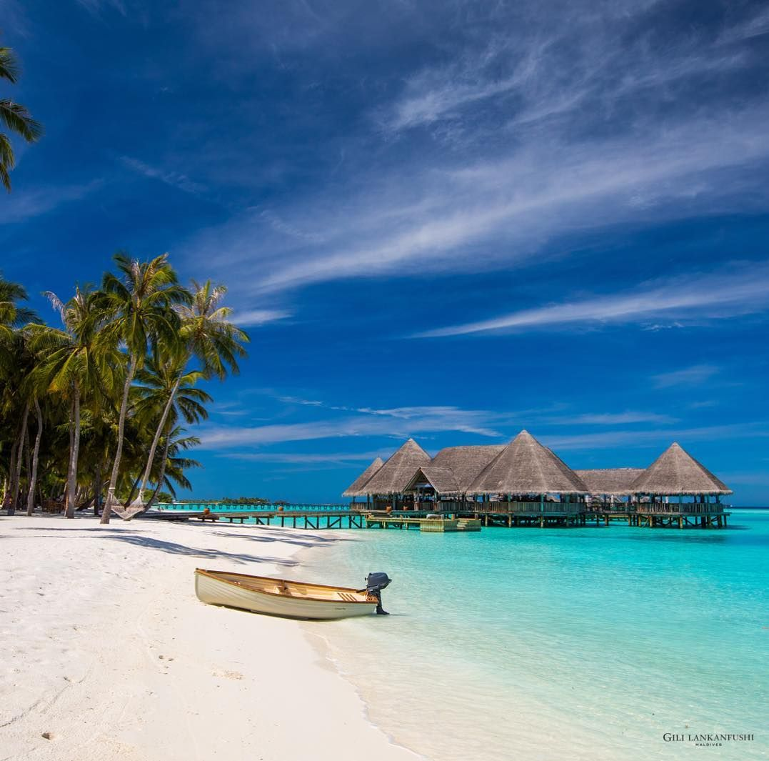 With The Natural Beauty Of The Greenery On The Island And Rich Marine Biodiversity In Our Surrounding Lagoons We Are Sens Natural Beauty Biodiversity Maldives